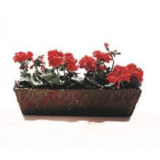 Bak vol geraniums