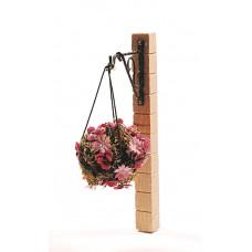 Hanging Basket met violen en Spaanse margrietjes
