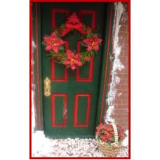 Kerststerren pakket in rood, ecru of zalm