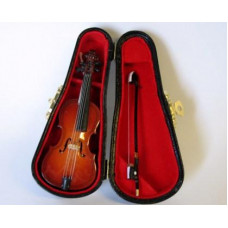 P61 Cello in luxe zwarte koffer
